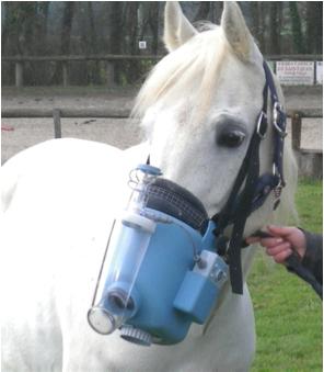 Nébulisateur chevaux (merci au Docteur JP Meurice pour la photo)