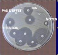 aromatogramme