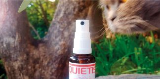 spray apaisant pour chats quietis